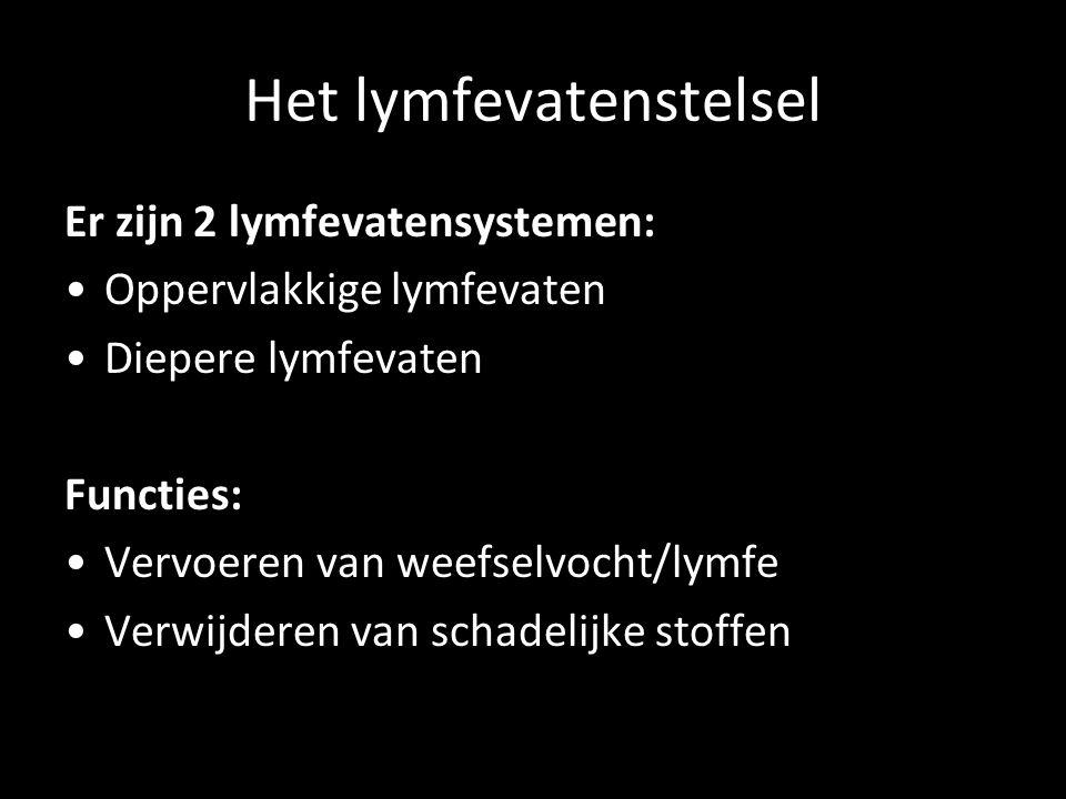 Het lymfevatenstelsel Er zijn 2 lymfevatensystemen: Oppervlakkige lymfevaten Diepere lymfevaten Functies: Vervoeren van weefselvocht/lymfe Verwijderen