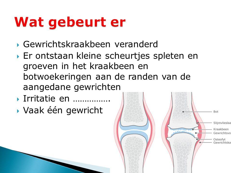  Gewrichtskraakbeen veranderd  Er ontstaan kleine scheurtjes spleten en groeven in het kraakbeen en botwoekeringen aan de randen van de aangedane ge