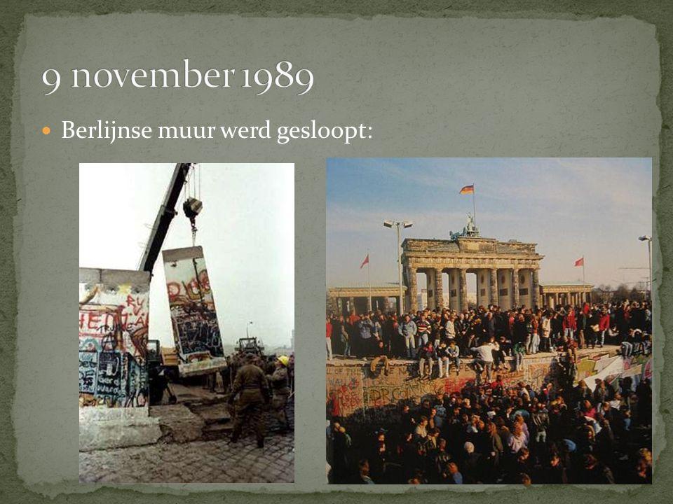 Berlijnse muur werd gesloopt: