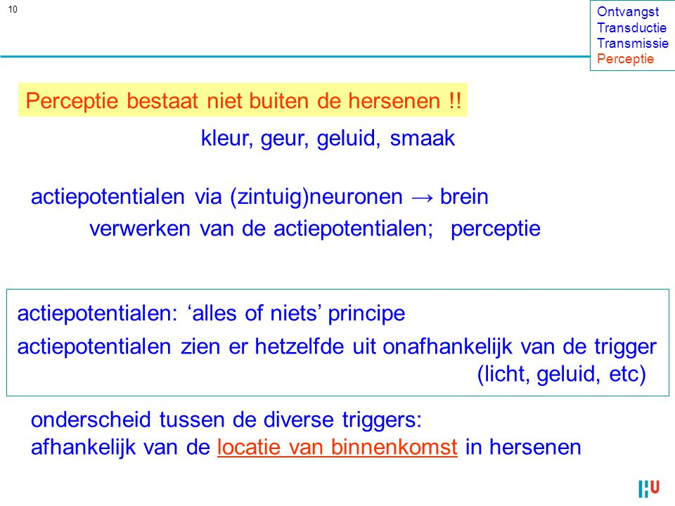 10 Perceptie bestaat niet buiten de hersenen !.