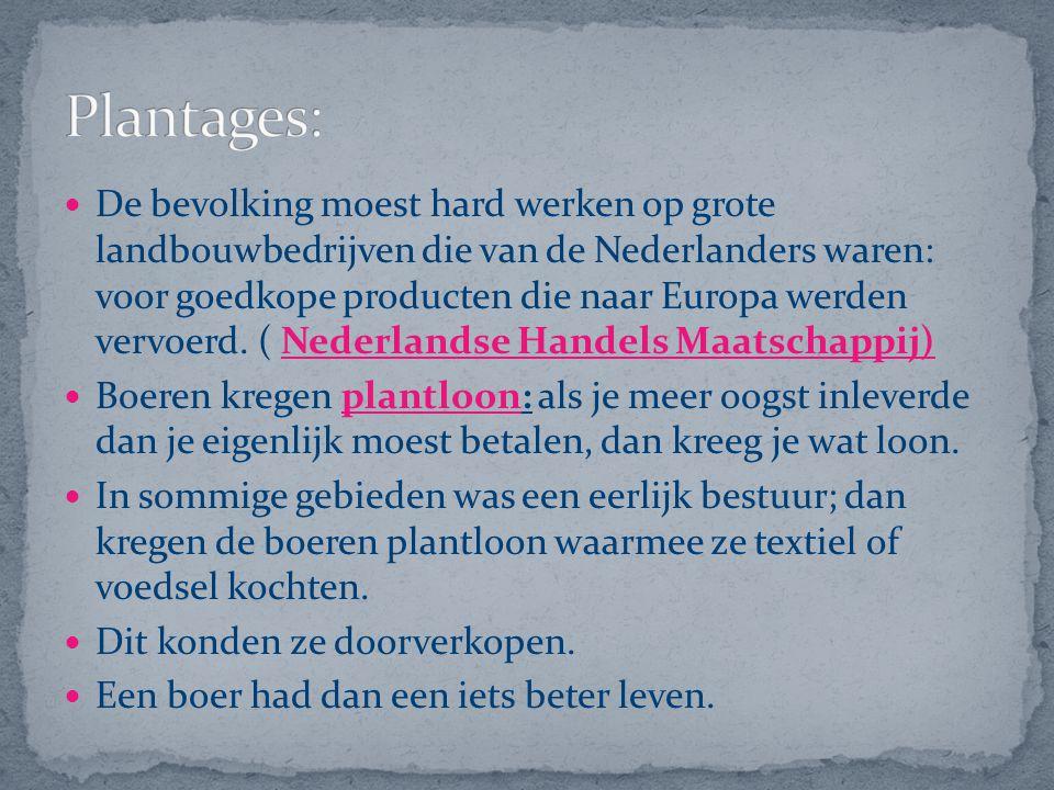 De bevolking moest hard werken op grote landbouwbedrijven die van de Nederlanders waren: voor goedkope producten die naar Europa werden vervoerd. ( Ne