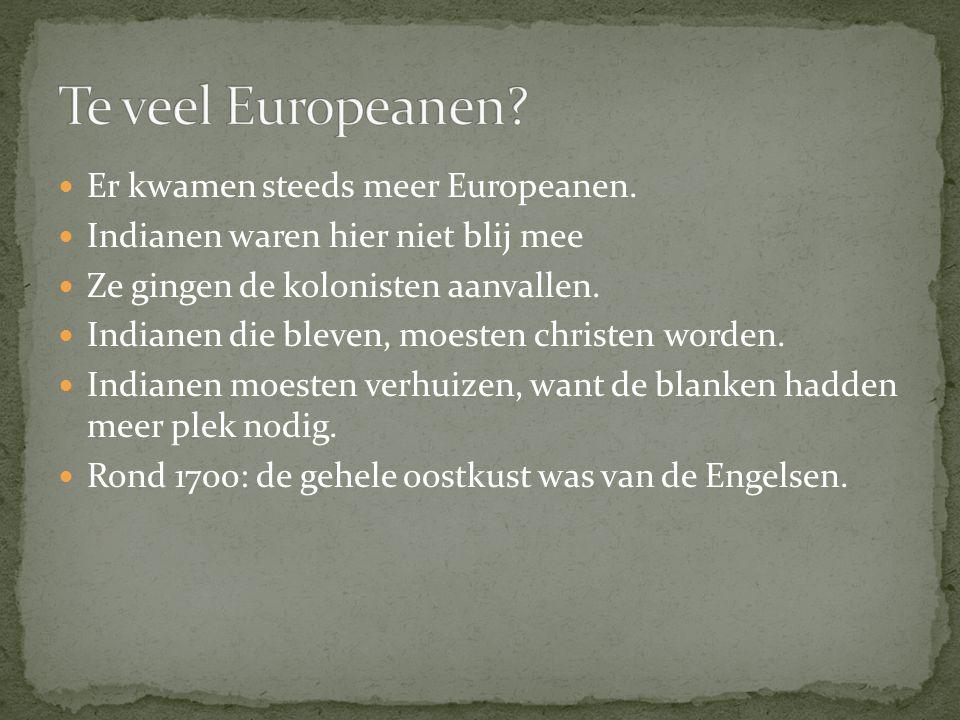 Er kwamen steeds meer Europeanen. Indianen waren hier niet blij mee Ze gingen de kolonisten aanvallen. Indianen die bleven, moesten christen worden. I