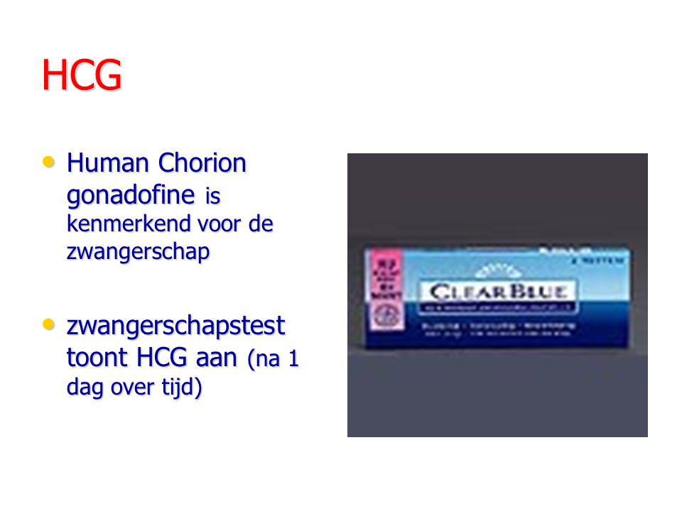 HCG Human Chorion gonadofine is kenmerkend voor de zwangerschap Human Chorion gonadofine is kenmerkend voor de zwangerschap zwangerschapstest toont HCG aan (na 1 dag over tijd) zwangerschapstest toont HCG aan (na 1 dag over tijd)