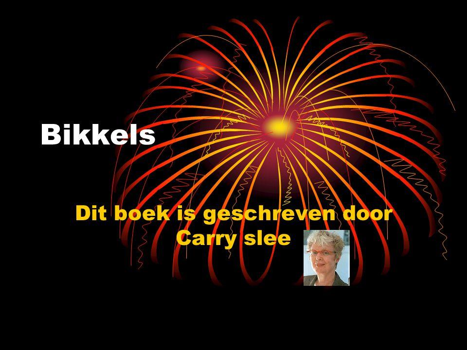 Bikkels Dit boek is geschreven door Carry slee