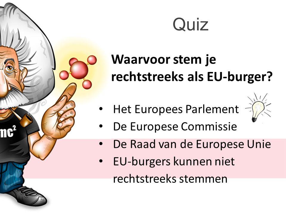Quiz Waarvoor stem je rechtstreeks als EU-burger.