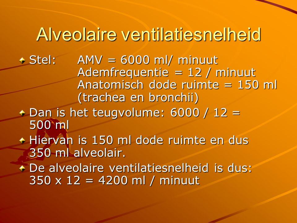 Ventilatie / perfusieverhouding Alveolaire ventilatie (V) = 4200 ml /minuut Hartminuutvolume (Q) = 5000 ml / minuut -> V/Q = 4200 / 5000 = 0,84