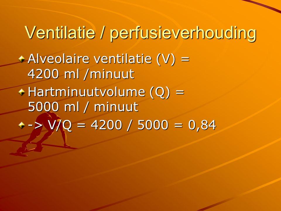 Vraag Wat gebeurt met de V/Q bij een snelle oppervlakkige ademhaling (met gelijkblijvende ademminuutvolume)?