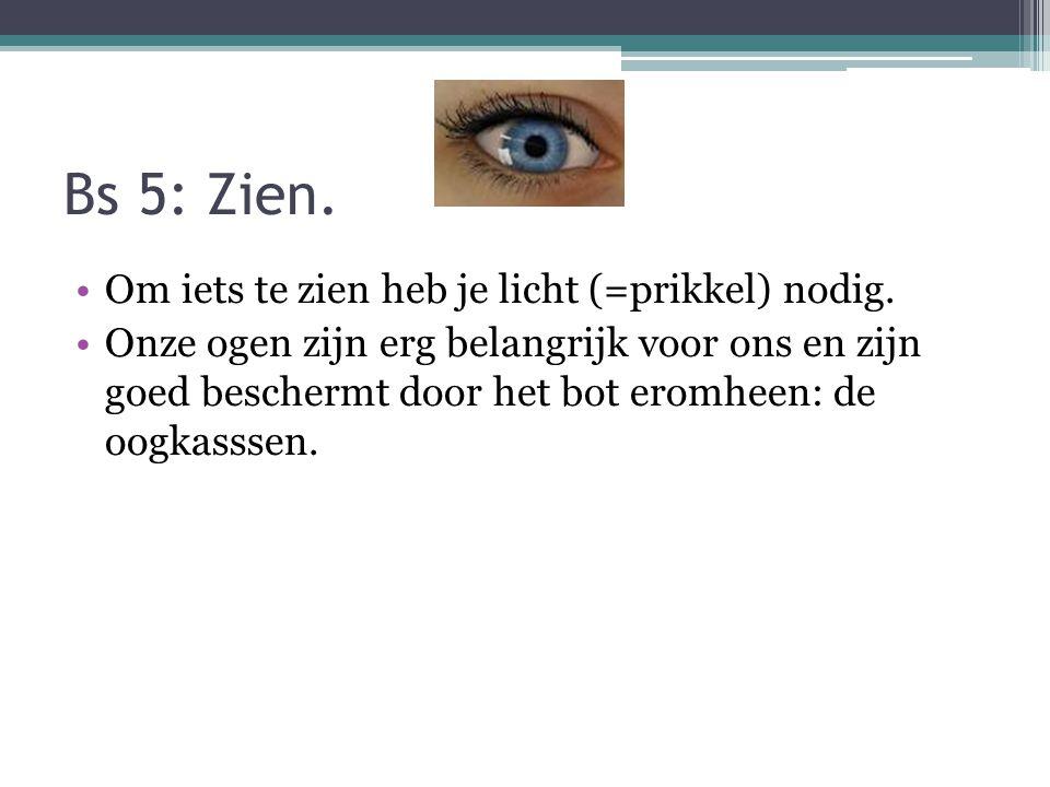 Bs 5: Zien. Om iets te zien heb je licht (=prikkel) nodig. Onze ogen zijn erg belangrijk voor ons en zijn goed beschermt door het bot eromheen: de oog