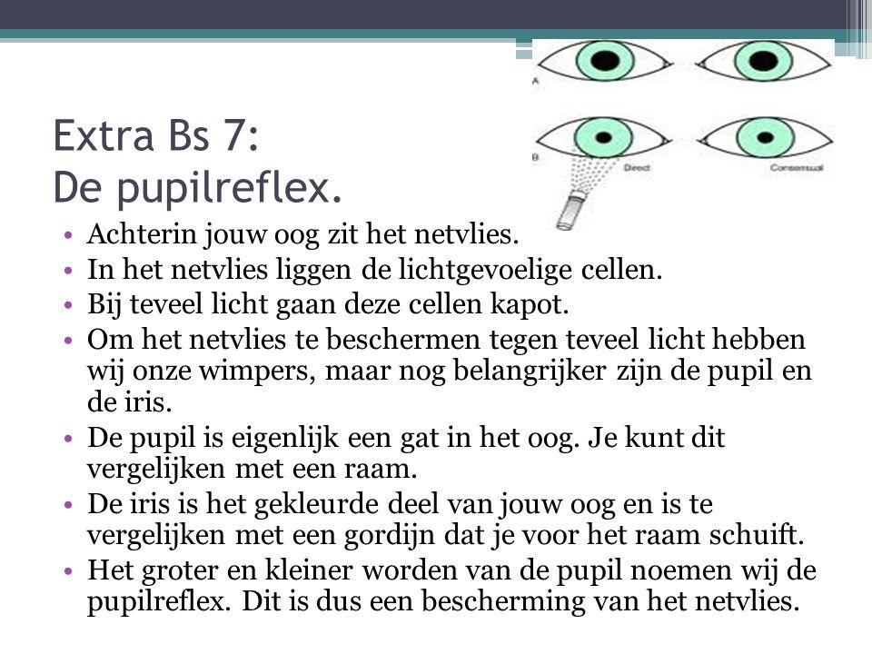 Extra Bs 7: De pupilreflex. Achterin jouw oog zit het netvlies. In het netvlies liggen de lichtgevoelige cellen. Bij teveel licht gaan deze cellen kap