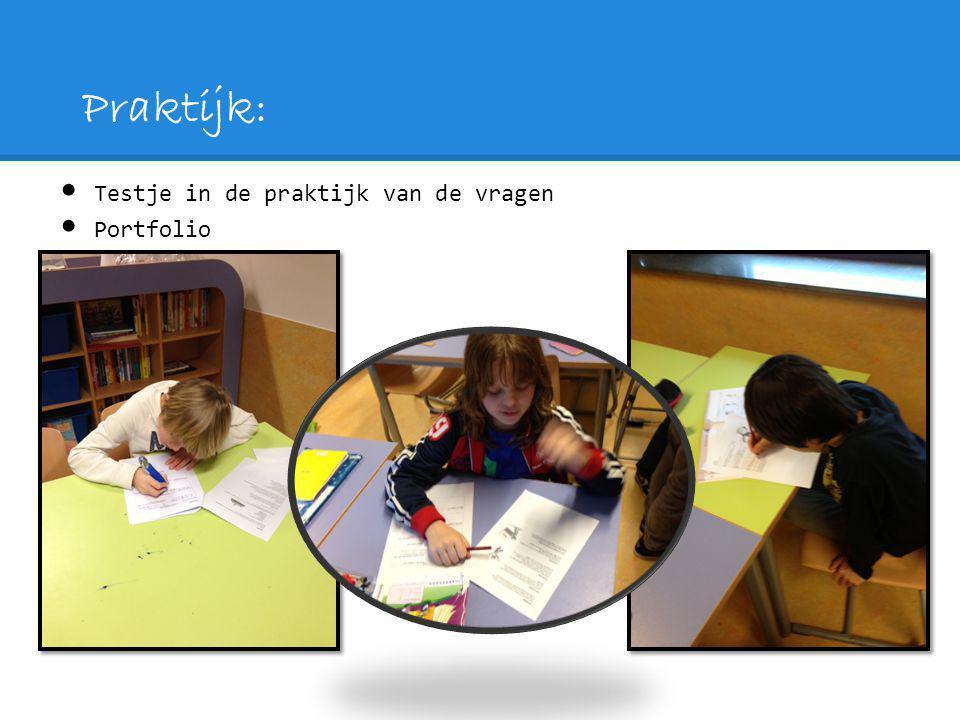 Praktijk: Testje in de praktijk van de vragen Portfolio