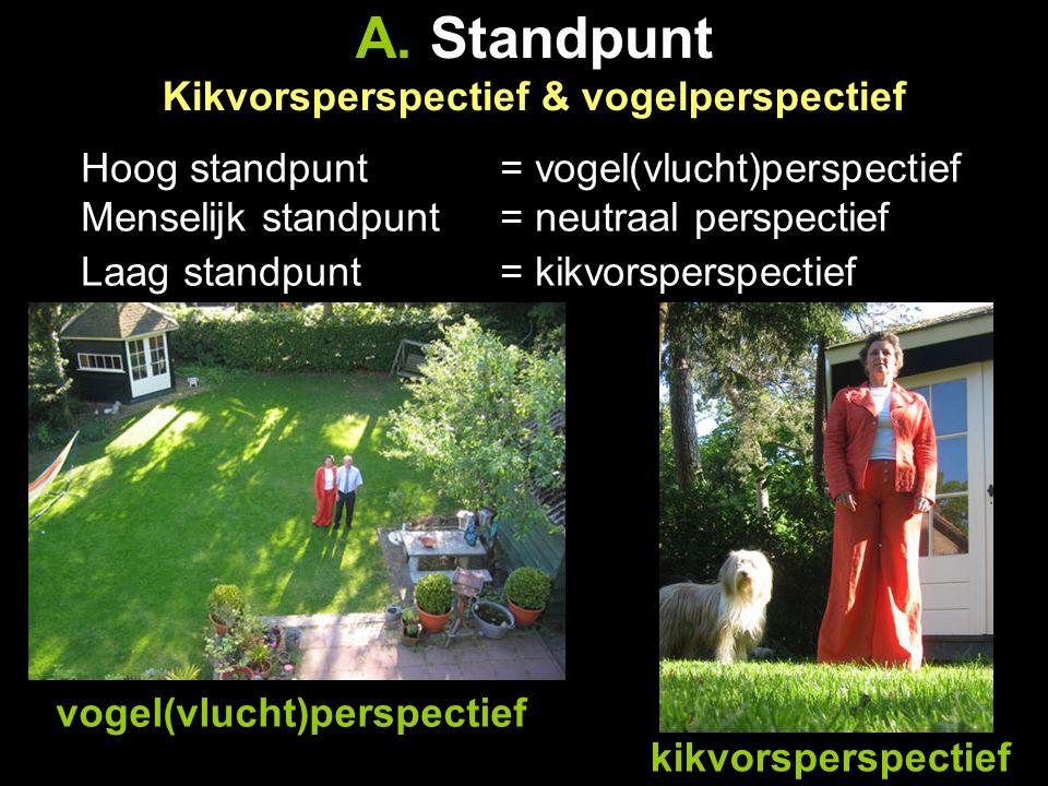 A. Standpunt Kikvorsperspectief & vogelperspectief Hoog standpunt = vogel(vlucht)perspectief Menselijk standpunt = neutraal perspectief Laag standpunt