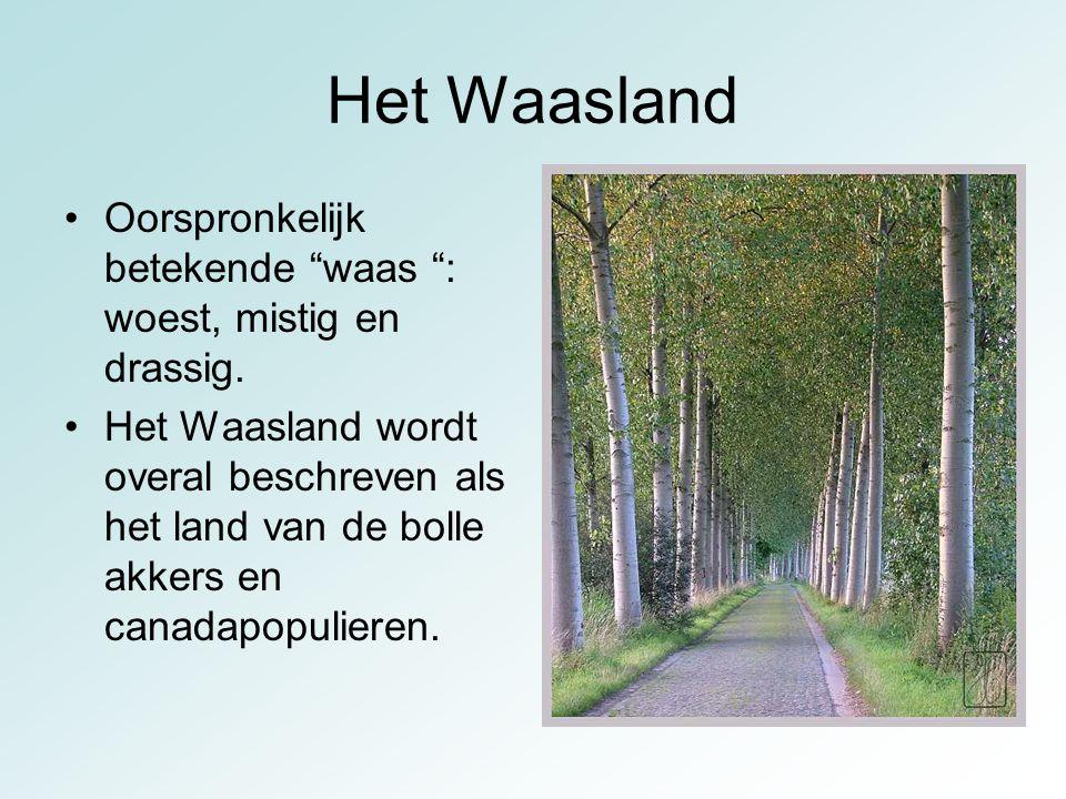 Het Waasland is ontstaan uit een heel vochtig gebied.