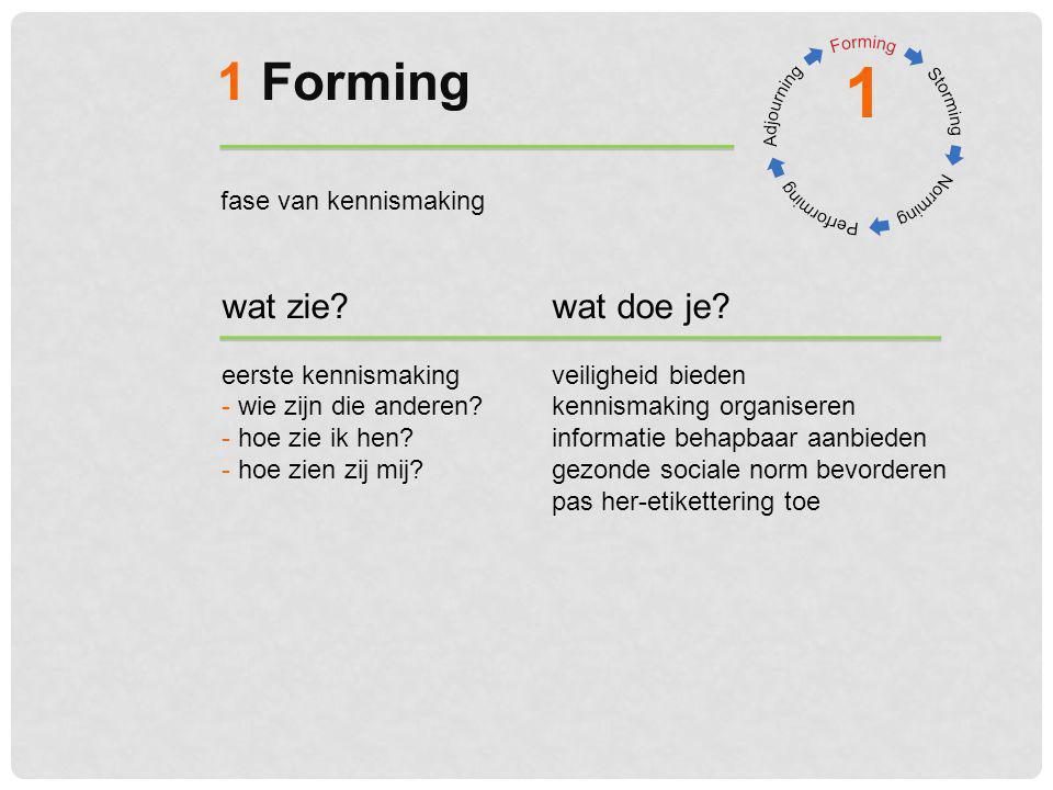1 Forming 1 wat zie?wat doe je? eerste kennismakingveiligheid bieden - wie zijn die anderen?kennismaking organiseren - hoe zie ik hen?informatie behap