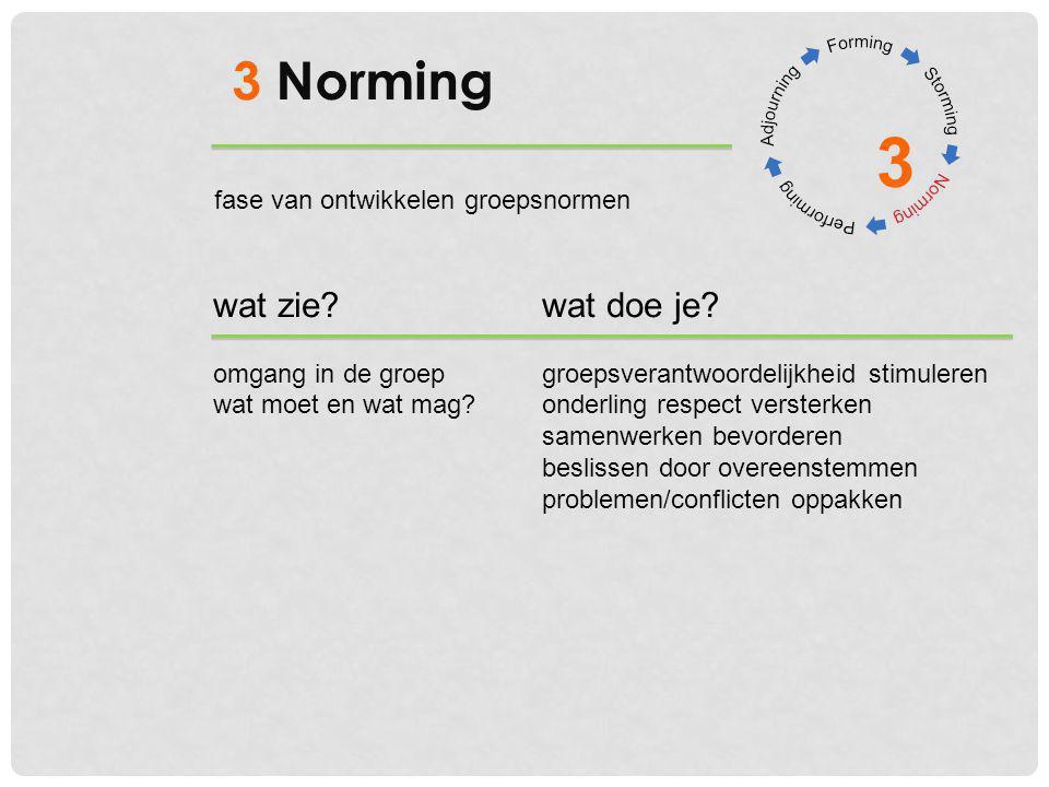3 3 Norming wat zie?wat doe je? omgang in de groepgroepsverantwoordelijkheid stimuleren wat moet en wat mag?onderling respect versterken samenwerken b