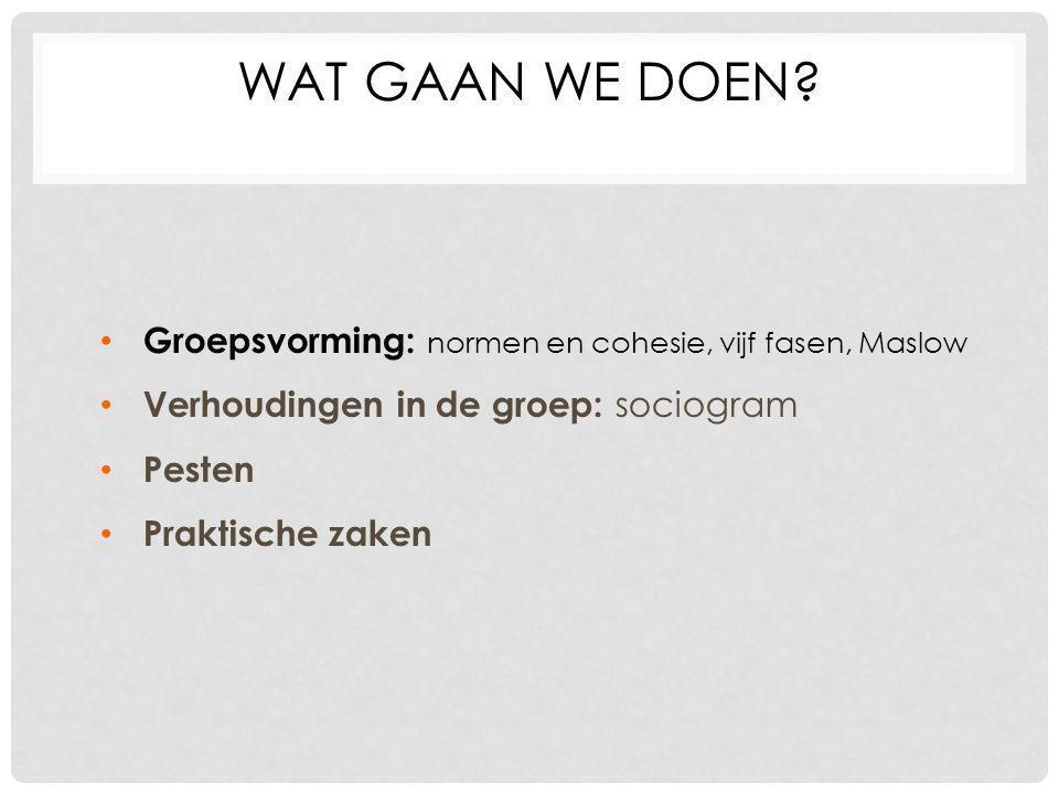 WAT GAAN WE DOEN? Groepsvorming: normen en cohesie, vijf fasen, Maslow Verhoudingen in de groep: sociogram Pesten Praktische zaken