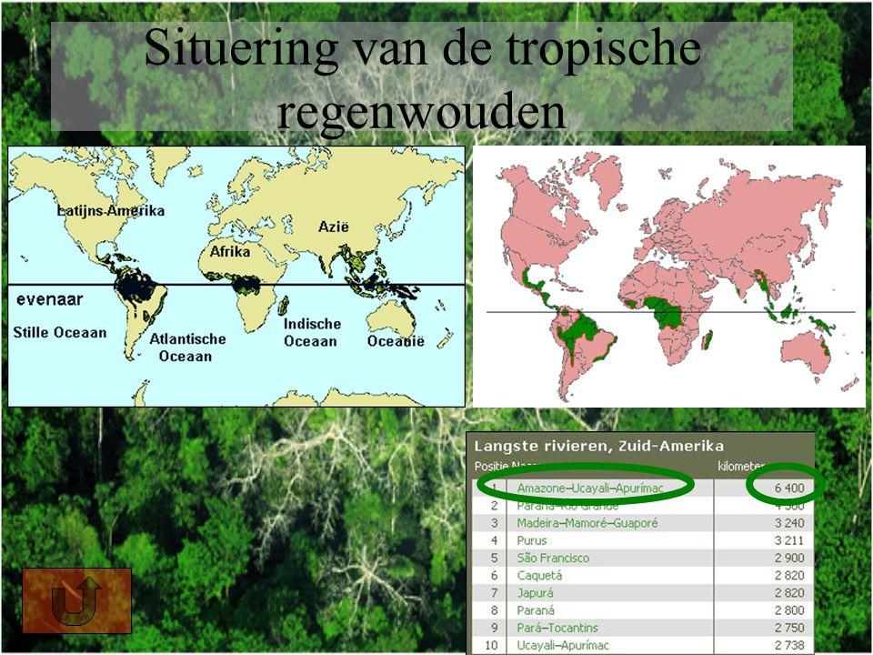 Situering van de tropische regenwouden