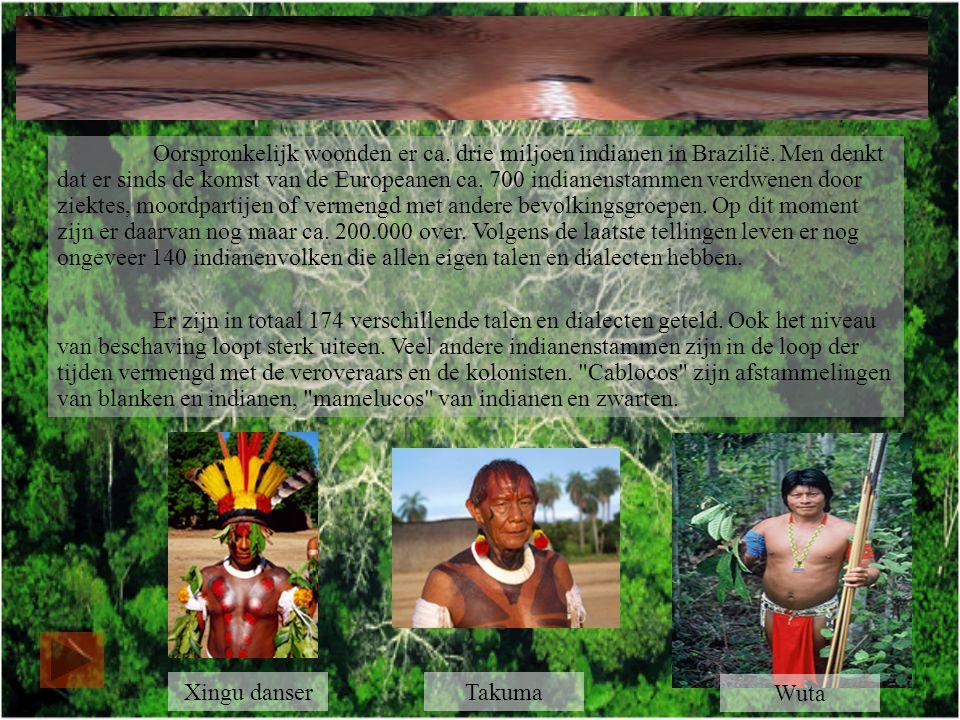 Oorspronkelijk woonden er ca.drie miljoen indianen in Brazilië.