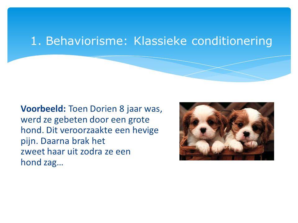 1. Behaviorisme: Klassieke conditionering Voorbeeld: Toen Dorien 8 jaar was, werd ze gebeten door een grote hond. Dit veroorzaakte een hevige pijn. Da