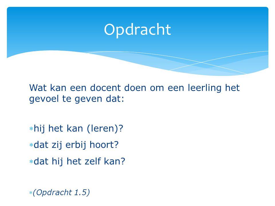  Ontwerp een mini-les Nederlands (max 20 min.) die gebaseerd is op een van de genoemde leertheorieën.