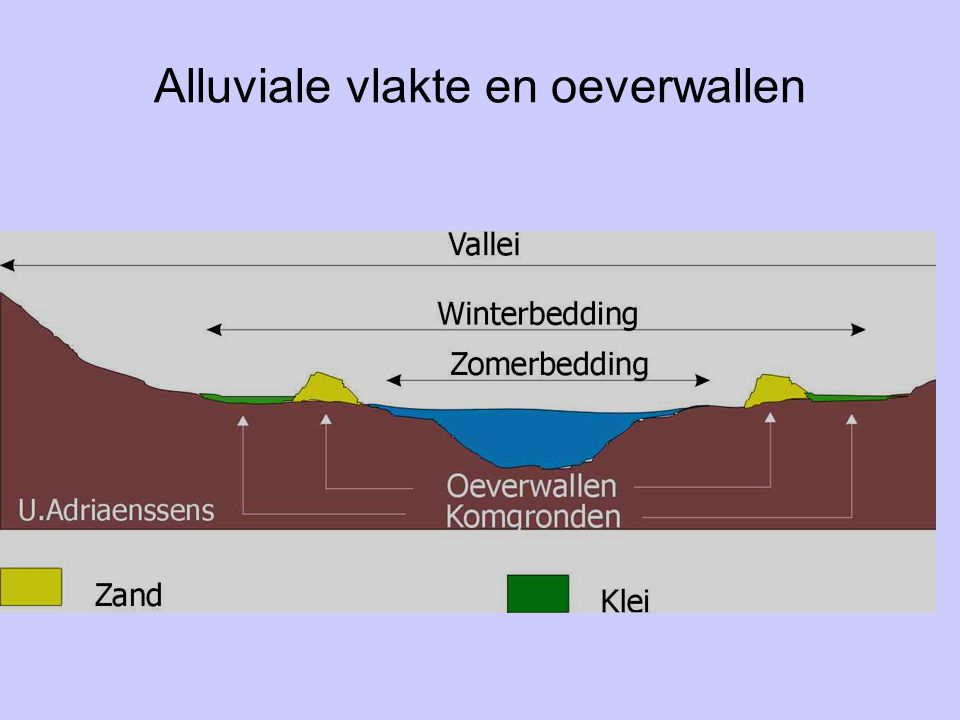 Alluviale vlakte en oeverwallen