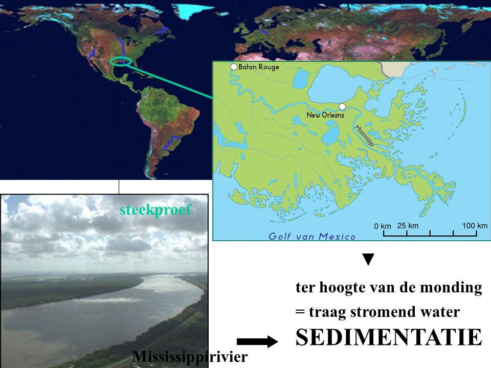 steekproef traag stromend heel breed verval debiet ter hoogte van de monding = traag stromend water SEDIMENTATIE Mississippirivier