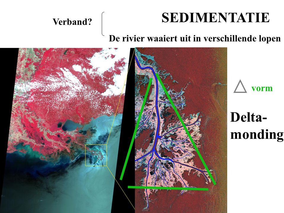 SEDIMENTATIE De rivier waaiert uit in verschillende lopen Verband? Delta- monding vorm