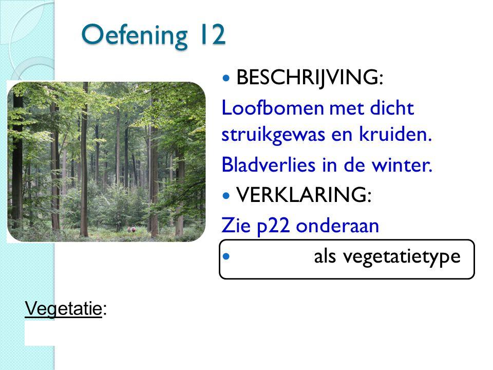 Oefening 12 BESCHRIJVING: Loofbomen met dicht struikgewas en kruiden. Bladverlies in de winter. VERKLARING: Zie p22 onderaan Loofbos als vegetatietype