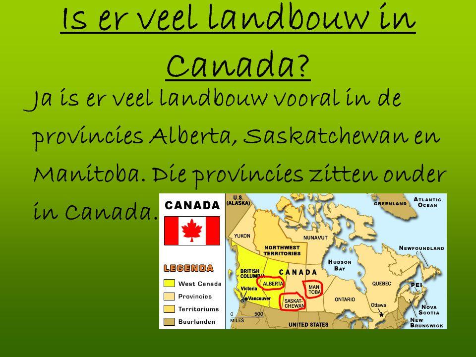 Is er veel landbouw in Canada? Ja is er veel landbouw vooral in de provincies Alberta, Saskatchewan en Manitoba. Die provincies zitten onder in Canada