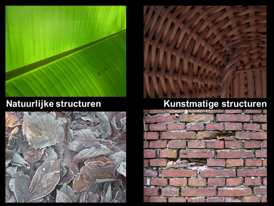 Natuurlijke structurenKunstmatige structuren