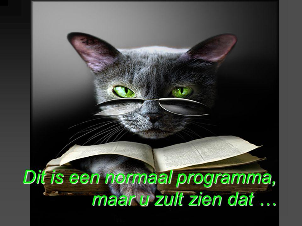 Dit is een normaal programma, maar u zult zien dat …