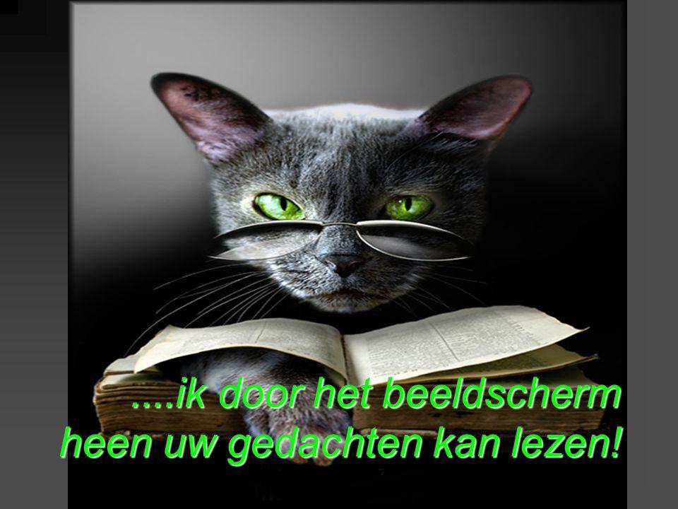 ....ik door het beeldscherm heen uw gedachten kan lezen!