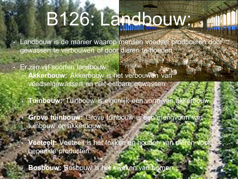 B126: Landbouw: Landbouw is de manier waarop mensen voedsel produceren door gewassen te verbouwen of door dieren te houden Er zijn vijf soorten landbo