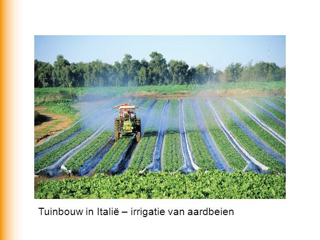 Tuinbouw in Italië – irrigatie van aardbeien