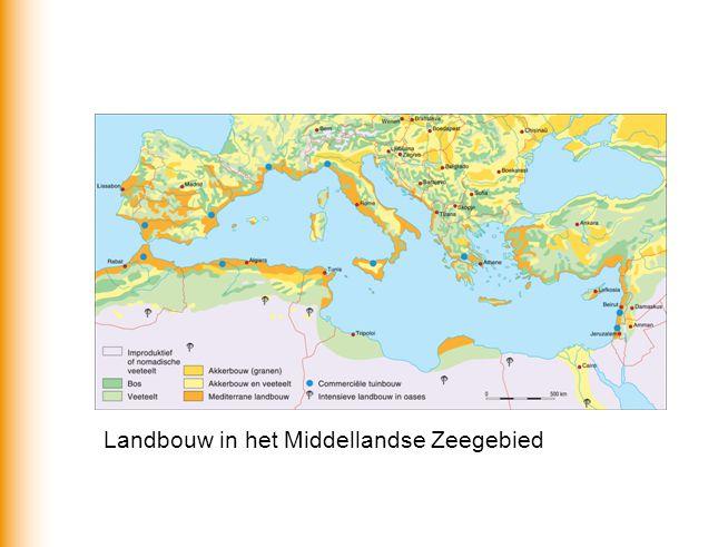 Landbouw in het Middellandse Zeegebied
