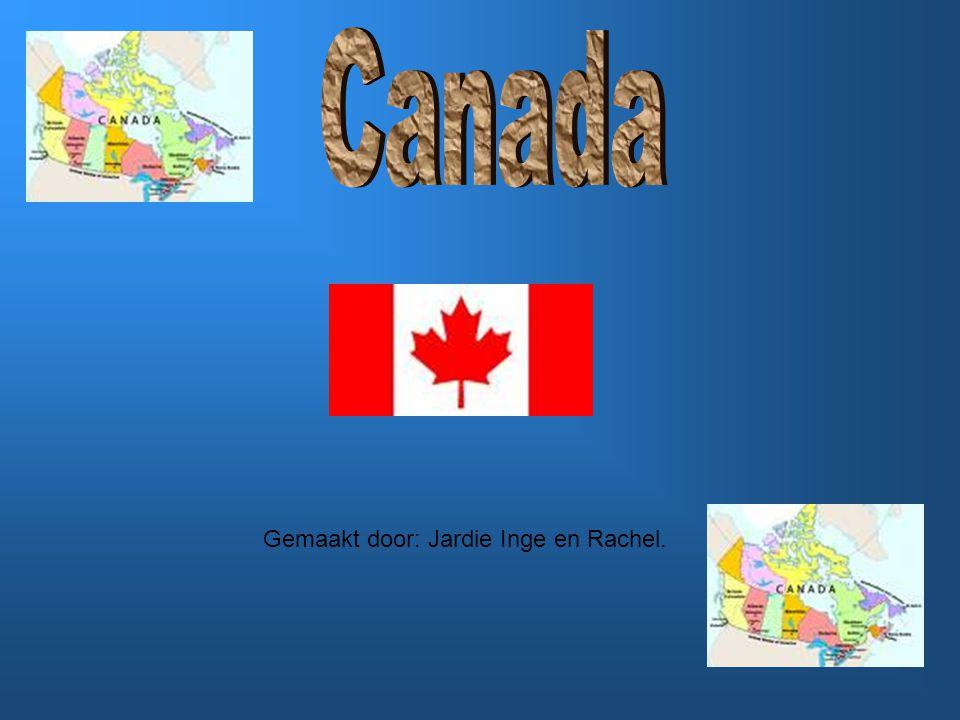 De opdracht van juf Annique was een project maken over het klimaat van Canada.