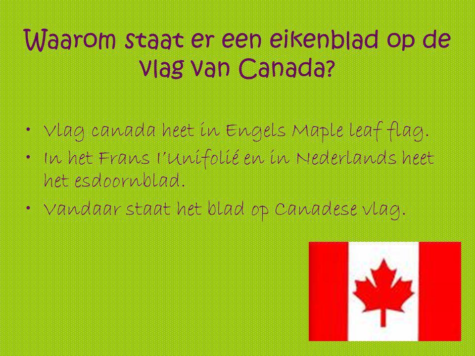 Waarom staat er een eikenblad op de vlag van Canada.