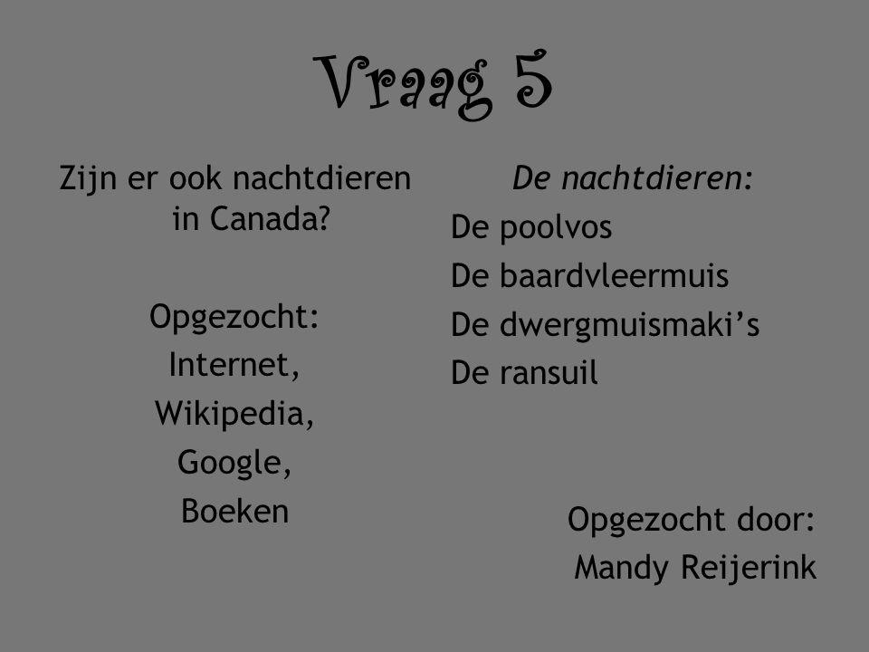 Vraag 5 Zijn er ook nachtdieren in Canada? Opgezocht: Internet, Wikipedia, Google, Boeken De nachtdieren: De poolvos De baardvleermuis De dwergmuismak