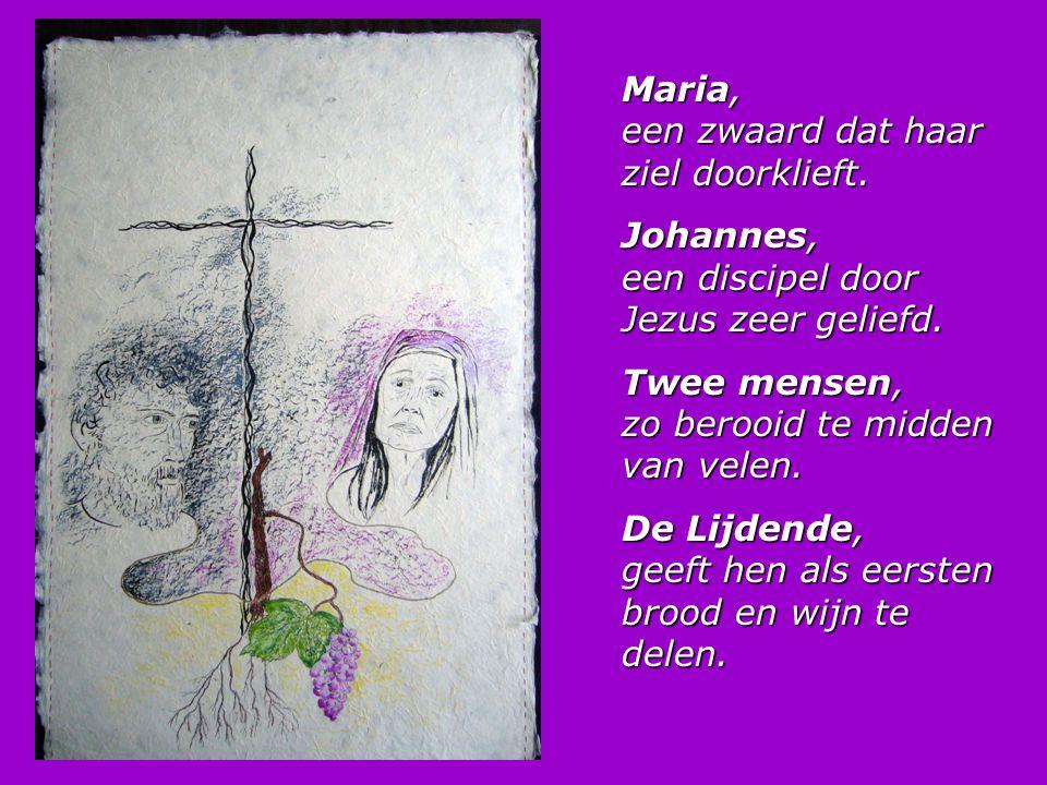 Maria, een zwaard dat haar ziel doorklieft. Johannes, een discipel door Jezus zeer geliefd. Twee mensen, zo berooid te midden van velen. De Lijdende,