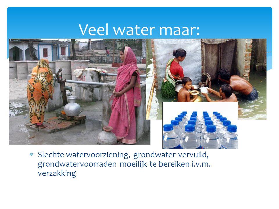 Water in Nederland Waterkwaliteit, zout water en verdroging