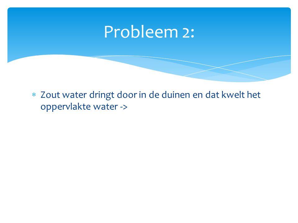  Zout water dringt door in de duinen en dat kwelt het oppervlakte water -> KWELWATER Probleem 2: