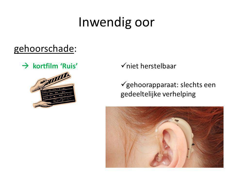 Inwendig oor gehoorschade:  kortfilm 'Ruis' niet herstelbaar gehoorapparaat: slechts een gedeeltelijke verhelping