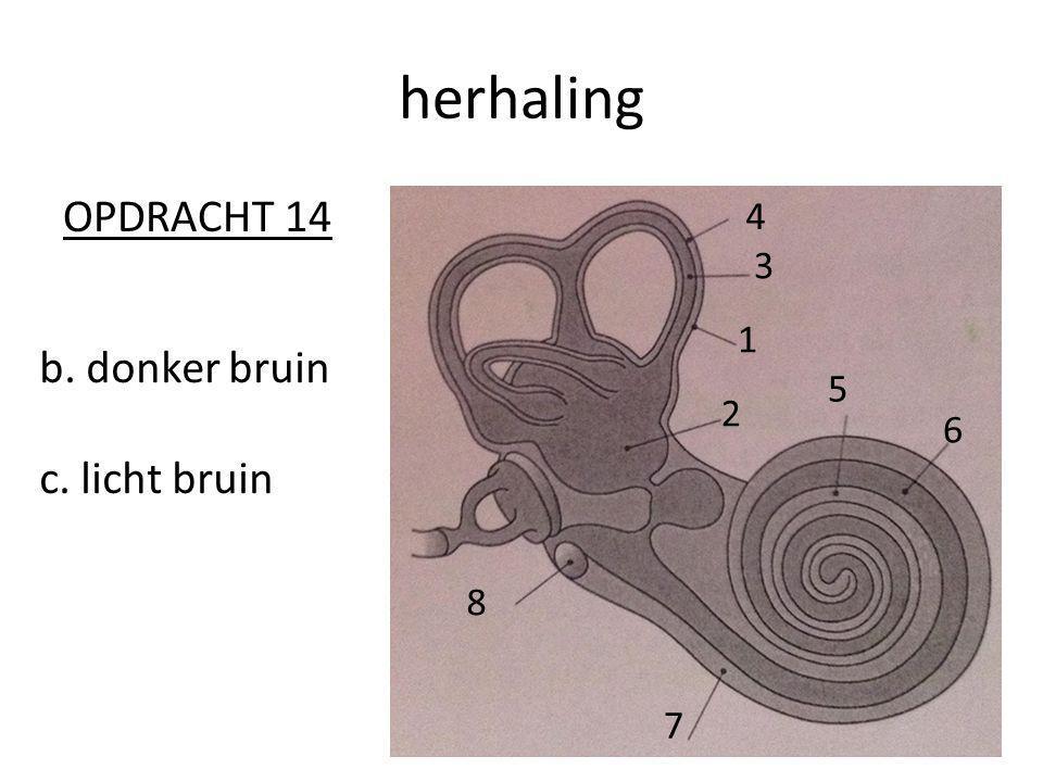 herhaling OPDRACHT 14 4 3 6 5 1 2 7 8 b. donker bruin c. licht bruin