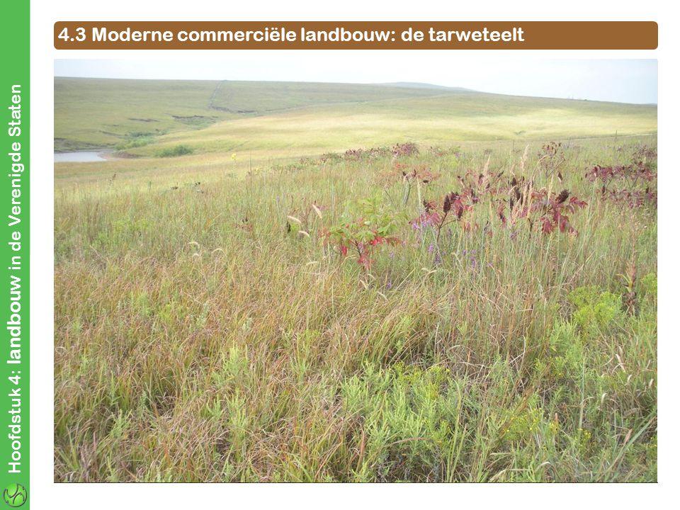 Topeka (Kansas V.S.) Warmgematigd altijd nat In orde 4.3 Moderne commerciële landbouw: de tarweteelt A. Teeltvoorwaarden tarweteelt Tijdens de groei v