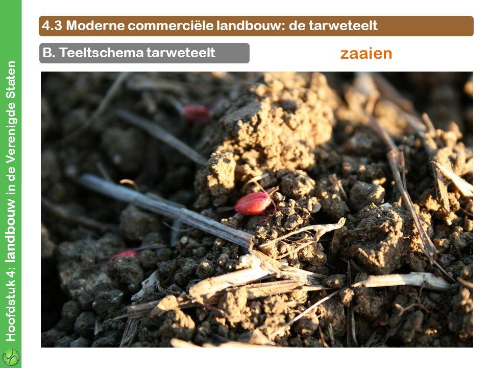 4.3 Moderne commerciële landbouw: de tarweteelt B. Teeltschema tarweteelt Hoofdstuk 4: landbouw in de Verenigde Staten zaaien