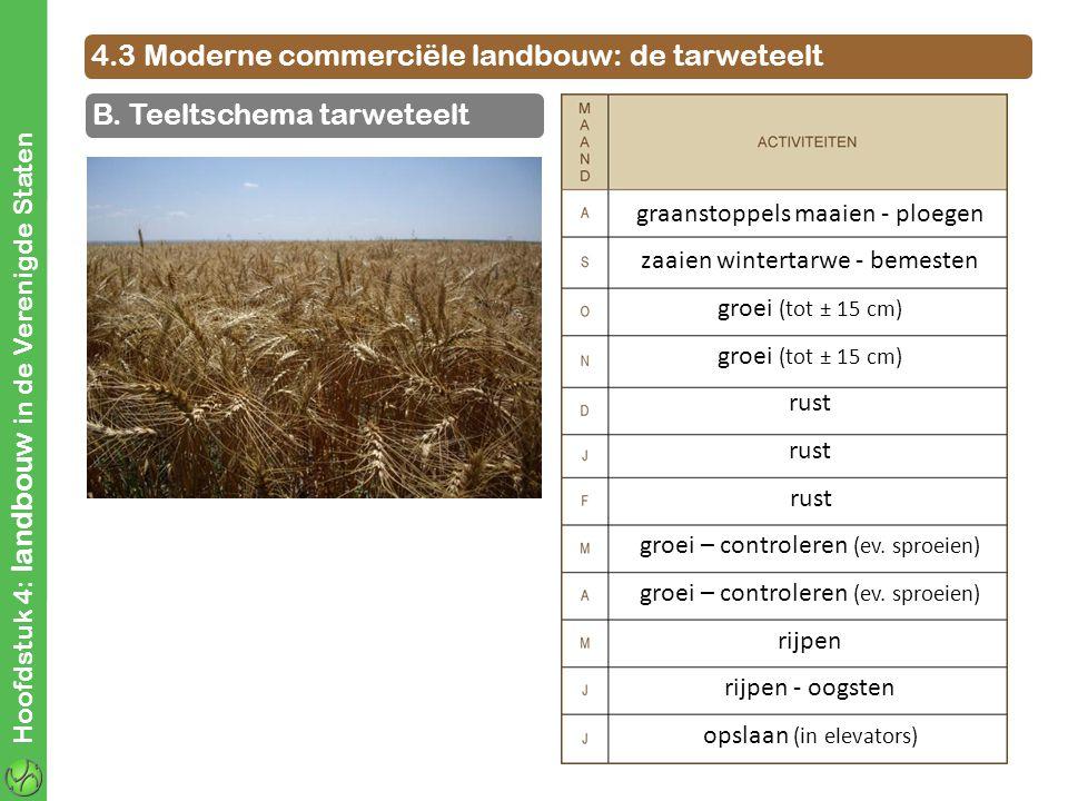 graanstoppels maaien - ploegen zaaien wintertarwe - bemesten groei (tot ± 15 cm) rust groei – controleren (ev. sproeien) rijpen rijpen - oogsten opsla