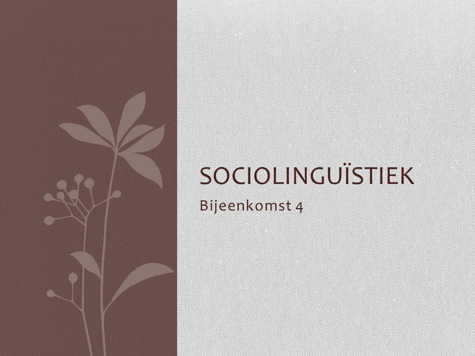 Bijeenkomst 5 Tweetaligheid 1Presentatie 2Tweetalig opvoeden 3.Bespreking hoofdstuk 20 4Bespreking artikel Etniciteit als sociolinguïstische factor.