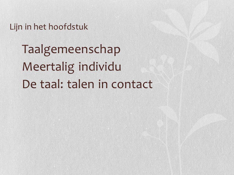 Lijn in het hoofdstuk Taalgemeenschap Meertalig individu De taal: talen in contact