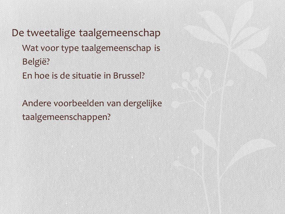 De tweetalige taalgemeenschap Wat voor type taalgemeenschap is België? En hoe is de situatie in Brussel? Andere voorbeelden van dergelijke taalgemeens
