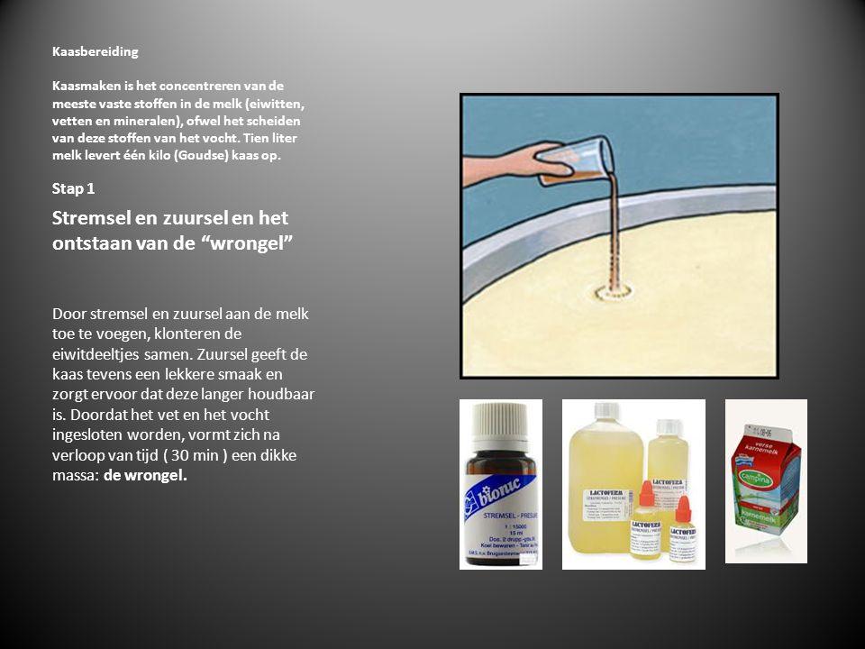 Stap 2 Wrongel  De wrongel wordt tot kleine korrels gesneden en stap voor stap verwarmd tot circa 36 graden Celsius.