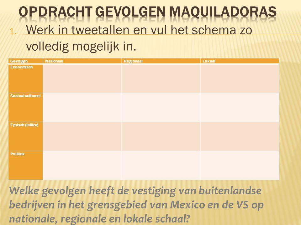 Welke gevolgen heeft de vestiging van buitenlandse bedrijven in het grensgebied van Mexico en de VS op nationale, regionale en lokale schaal? Gevolgen
